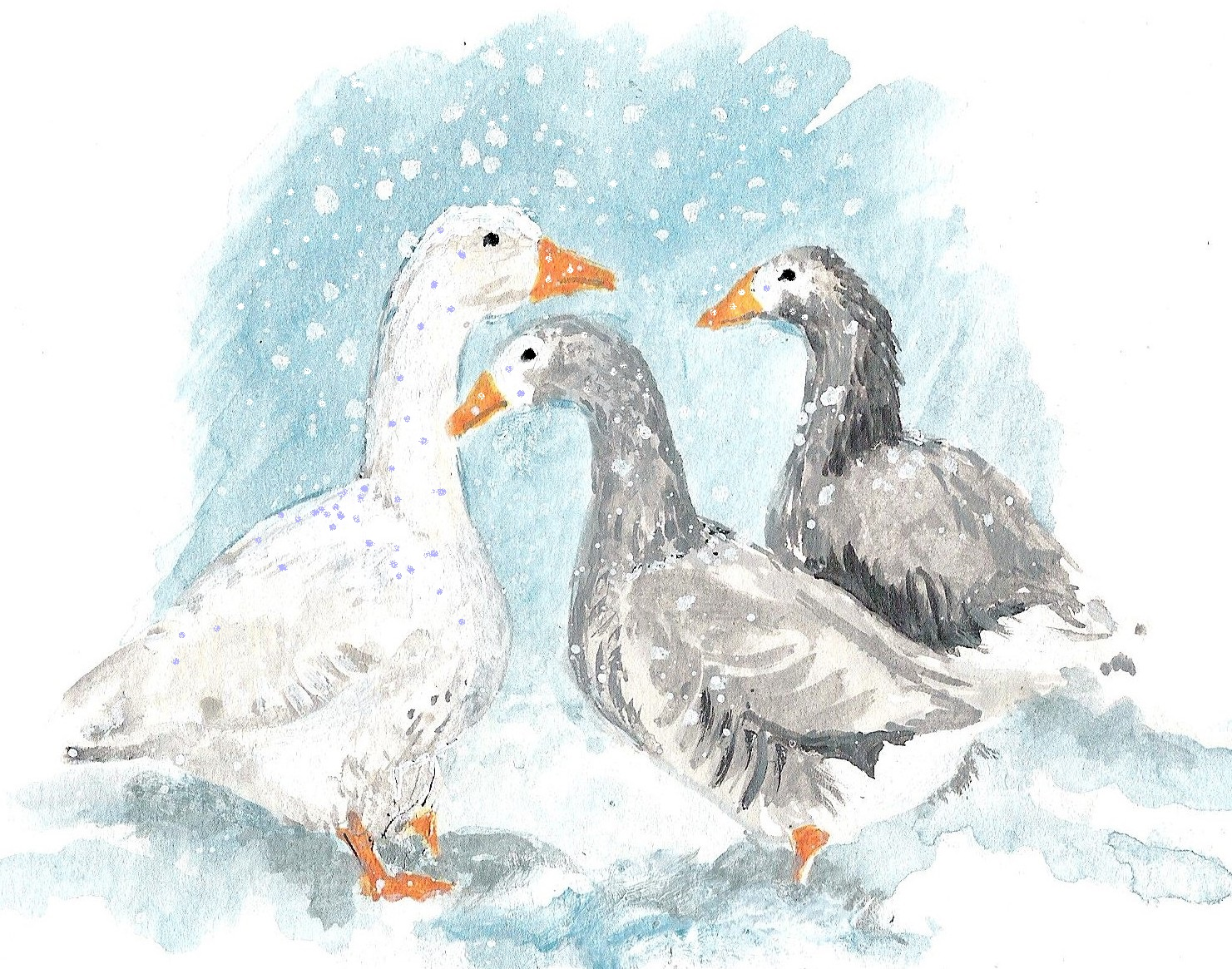 geese-001